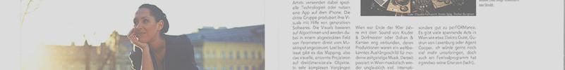 Transparency WordPress2011 MediaBiz_soundframe 800x100 copy
