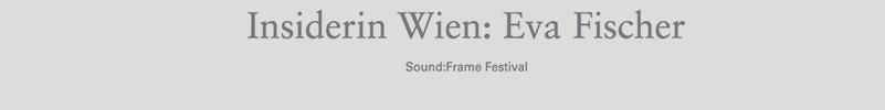 Transparency WordPress2014 Insiderin Wien_800x100 copy